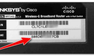 Как узнать MAC-адрес роутера?